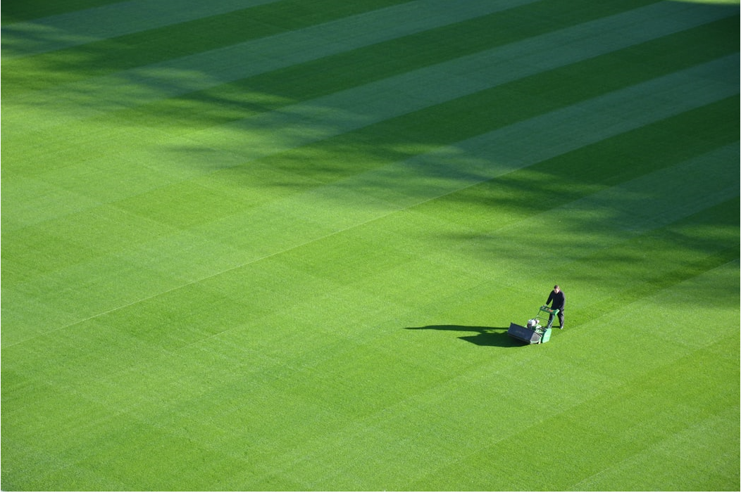 Fall Lawn Care: Aeration and Overseeding